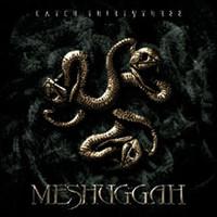 Meshuggah: Catch 33