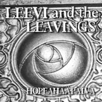 Leevi and The Leavings: Hopeahääpäivä