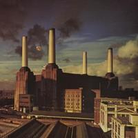 Pink Floyd : Animals