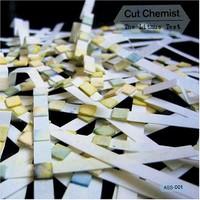 Cut Chemist: Litmus Test