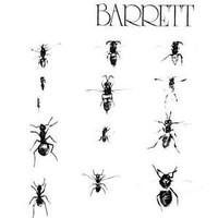 Barrett, Syd: Barrett