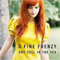 A Fine Frenzy: One cell in the sea