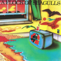 A Flock Of Seagulls: A flock of seagulls