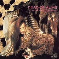 Dead Or Alive: Sophisticated boom boom