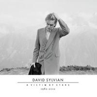 Sylvian, David: A victim of stars 1982–2012