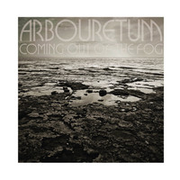 Arbouretum: Coming Out of the Fog