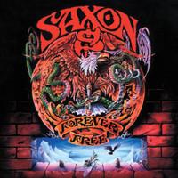 Saxon: Forever free
