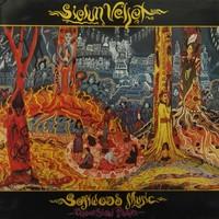 Sielun Veljet: Softwood Music - Under Slow Pillars
