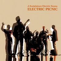 Karjalainen, J.: Electric picnic