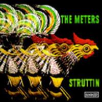 Meters: Struttin