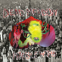 Dead Meadow: Warble Womb