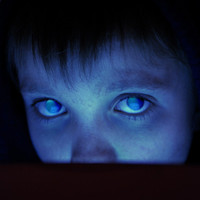 Porcupine Tree : Fear of a Blank Planet