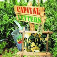 Capital Letters: Vinyard