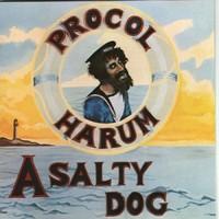 Procol Harum: A salty dog