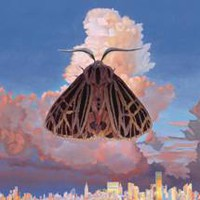 Chairlift: Moth