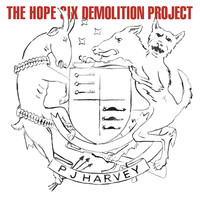 Harvey, PJ: The Hope Six Demolition Project