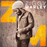 Marley, Ziggy: Ziggy Marley