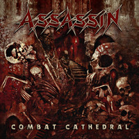 Assassin (Ger): Combat cathedral