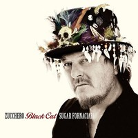 Zucchero: Black cat