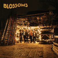 Blossoms (UK): Blossoms