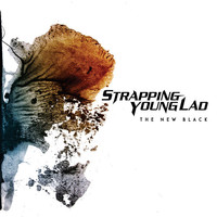 Strapping Young Lad: New black