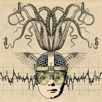 Thank You Scientist: Stranger heads prevail