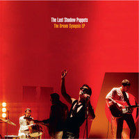 Last Shadow Puppets: Dream Synopsis