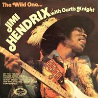 Hendrix, Jimi: The Wild One