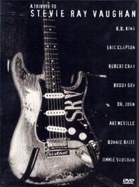V/A: A tribute to stevie ray vaughan
