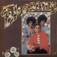 Blossoms: Shockwave