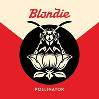 Blondie : Pollinator