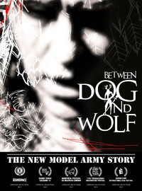 New Model Army: The New Model Army story: between dog and wolf