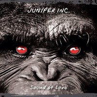 Juniper Inc.: Sound Of Love