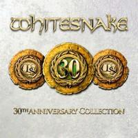 Whitesnake: 30th anniversary collection