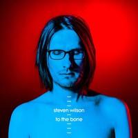Wilson, Steven : To the bone