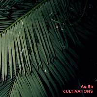 Aura: Cultivations
