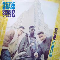 3rd Bass: Brooklyn-Queens