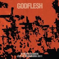 Godflesh: Streetcleaner: Live At Roadburn 2011