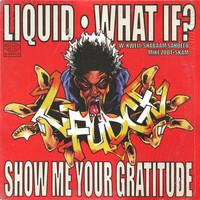 L-Fudge: Liquid / What If? / Show Me Your Gratitude