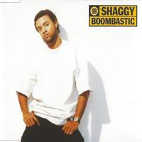 Shaggy: Boombastic