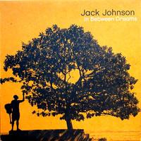 Johnson, Jack : In Between Dreams