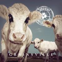 Steve'n'Seagulls: Grainsville