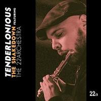Tenderlonious: Shakedown