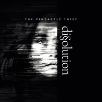 Pineapple Thief : Dissolution