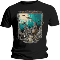 A Perfect Circle: The Depths