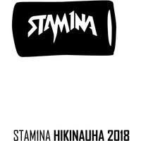 Stam1na: Logo long wristband