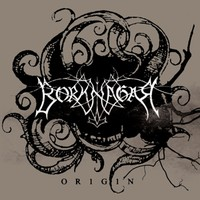 Borknagar: Origin