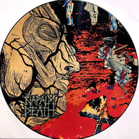 Napalm Death : Harmony Corruption -picture disc-