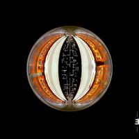 Tuomarila, Alexi - Trio: Sphere