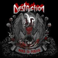 Destruction: Born To Perish